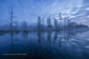 Moornacht, Foto Karsten Mosebach